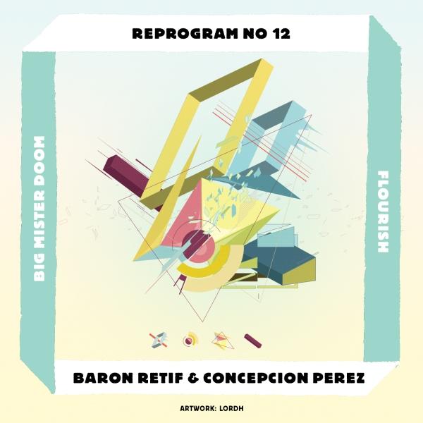 REPROGRAM_NR12