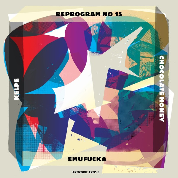 REPROGRAM_NR15